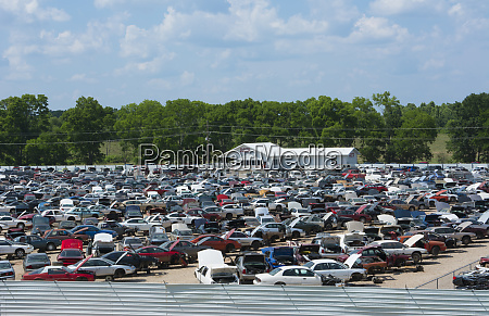 rows of old wrecked cars in
