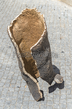 portugal evora cork bark large format