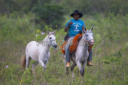 brazil a pantanero a brazilian cowboy