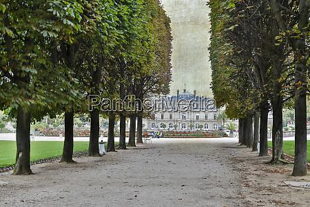late summer luxembourg garden paris
