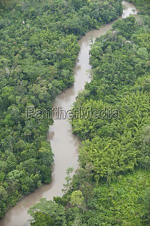 tiputini river and rainforest yasuni national