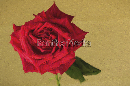 painting effect on red rose and