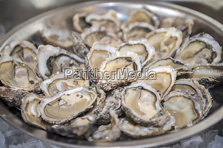 asnelle, bay, oysters, , cabourg, , normandy, , france - 27885262