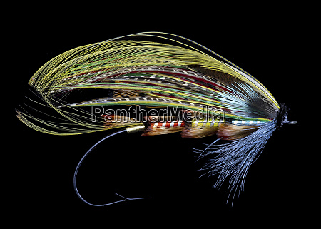 atlantic salmon fly designs popham