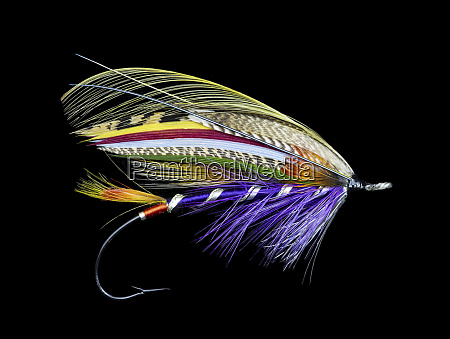 atlantic salmon fly designs purple queen