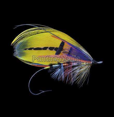 atlantic, salmon, fly, designs, 'shannon' - 27887887