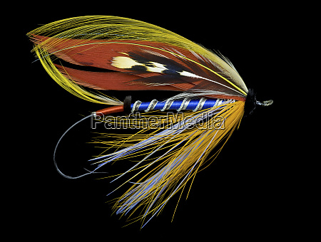 atlantic salmon fly designs bluebell