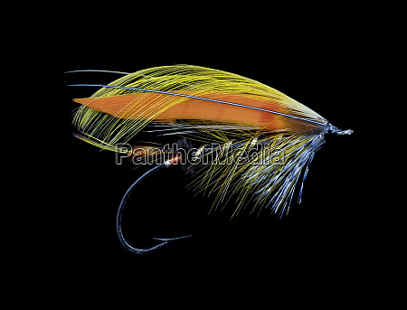 atlantic salmon fly designs black goldfinch