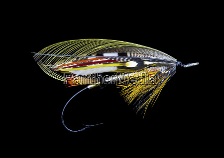 atlantic salmon fly designs dusty miller