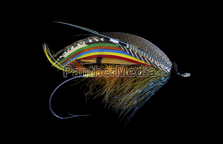 atlantic salmon fly designs golden olive