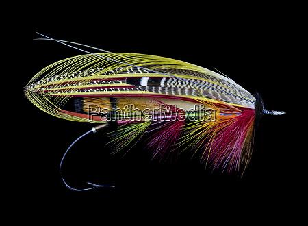 atlantic, salmon, fly, designs - 27888049