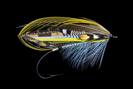 atlantic, salmon, fly, designs - 27888072