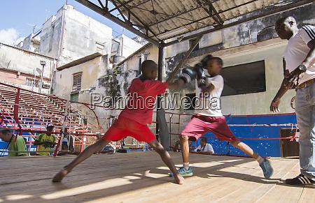 havana cuba boys learning to fight