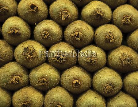 display of kiwi fruit in an