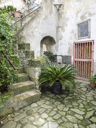 italy basilicata matera plants adorn the