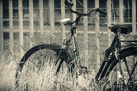 abandoned vintage bicycle