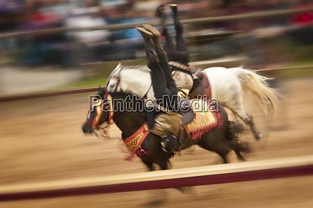 riding tricks on horses panning shot