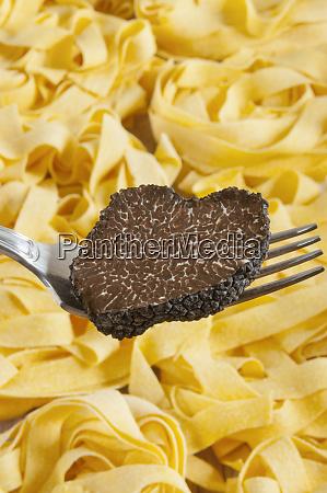 summer black truffle tuber aestivum on