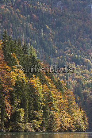 germany bavaria konigsee fall foliage