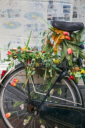netherlands amsterdam bicycle covered in tulips