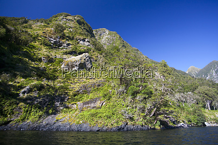 stunning cliffs of new zealands remote