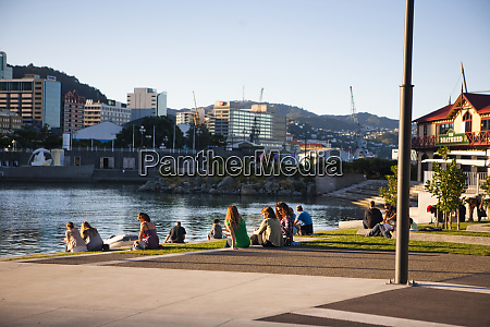 late afternoon on the wellington waterfront