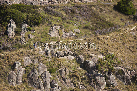 new zealand south island christchurch mountain