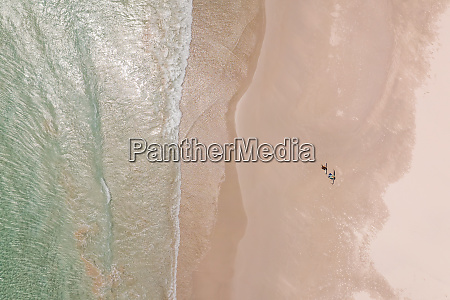 aerial view of surfers walking at