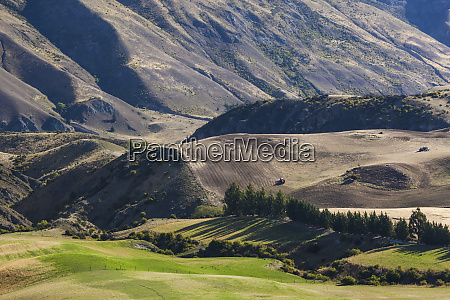 new zealand south island otago cardrona