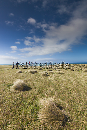 new zealand south island southland the