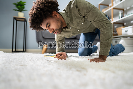 male, looking, at, carpet, with, magnifying - 27952079