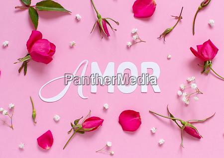 flowers and word amor on a