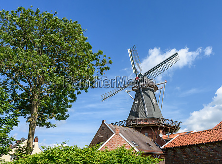 windmill in the rundwarftendorf rysum east