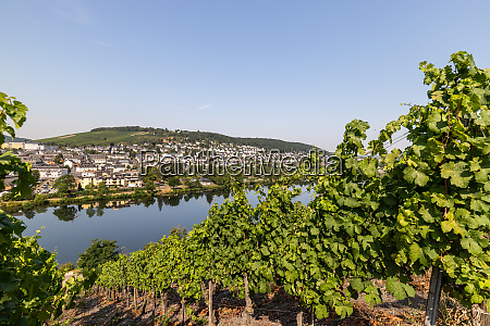 scenic view at river moselle valley