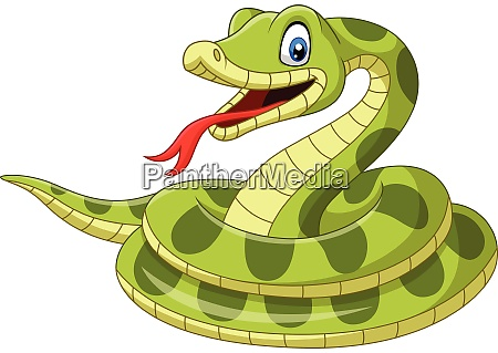 cartoon green snake on white background