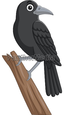 cartoon crow standing on a tree