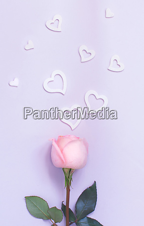 spring composition with rose and hearts
