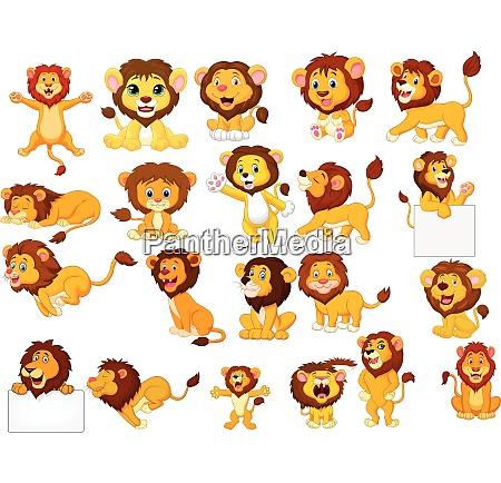 cartoon lions collection set