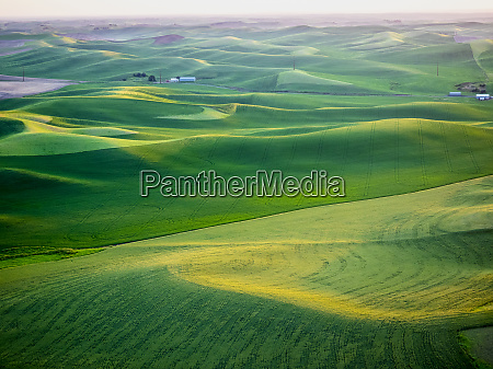 usa washington state aerial of palouse