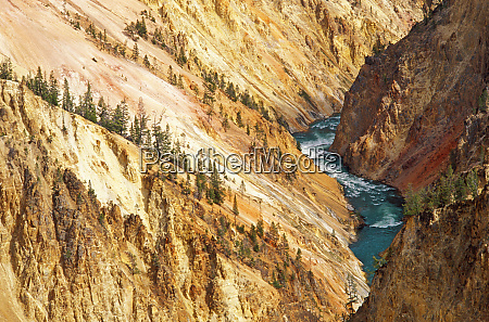 the yellowstone river and canyon from