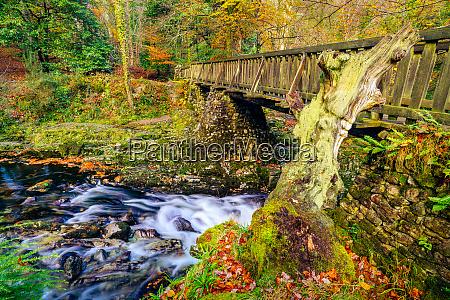 cascades under wooden bridge on mountain
