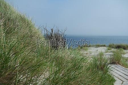 coastal landscape helgoland duene