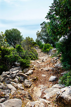 hiking path in cilento national park