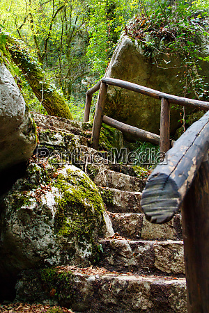 stone stairs in the natural reserve