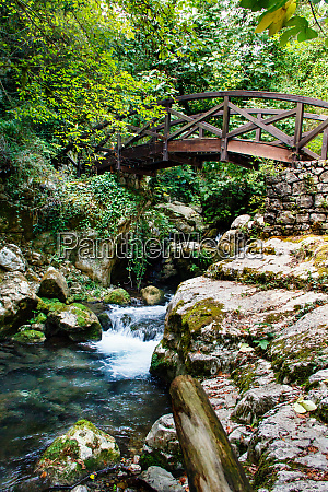 wooden bridge in the natural reserve