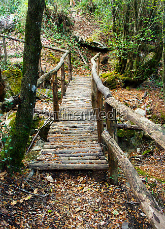 path in the natural reserve of