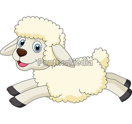 cute sheep jumping
