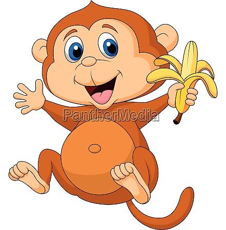 cute monkey eating banana
