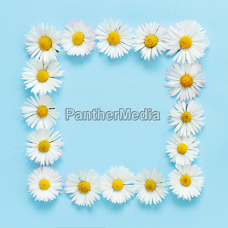 rectangular floral frame on a light