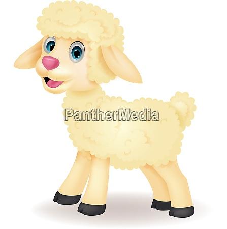 cute baby sheep cartoon